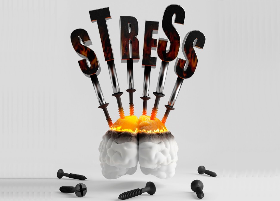 Stress Hormones: Friends or Enemies?
